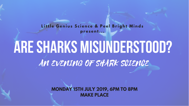Are Sharks Misunderstood? An Evening of Shark Science